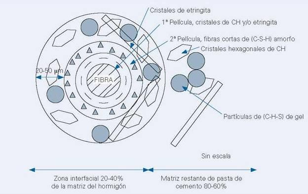Zonas de interacción interfacial ITZ