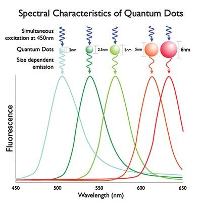 El porqué las diferentes propiedades de las nano partículas