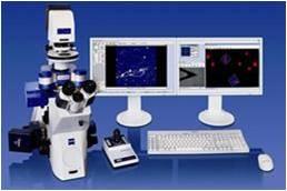 Microscopio atómico de fuerza AFM