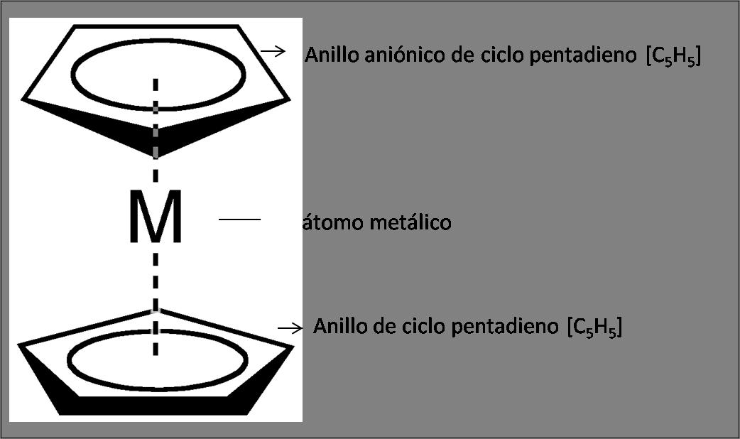 Estructura de un metaloceno