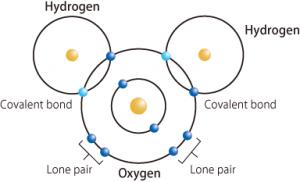 La imagen tiene un atributo ALT vacío; su nombre de archivo es estructura-de-la-molécula-de-agua_figura-4-300x182.png